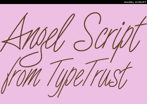 angel-script
