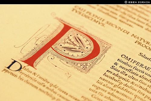eben sorkin decorated initial cap from illuminated manuscript
