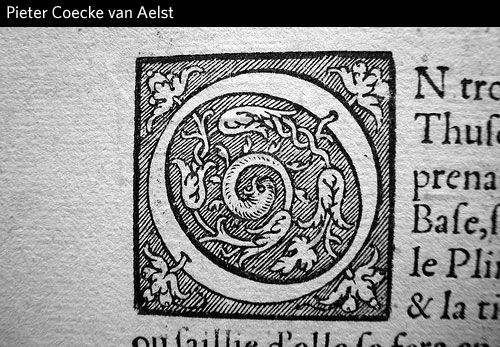 Pieter-Coecke-van-Aelst