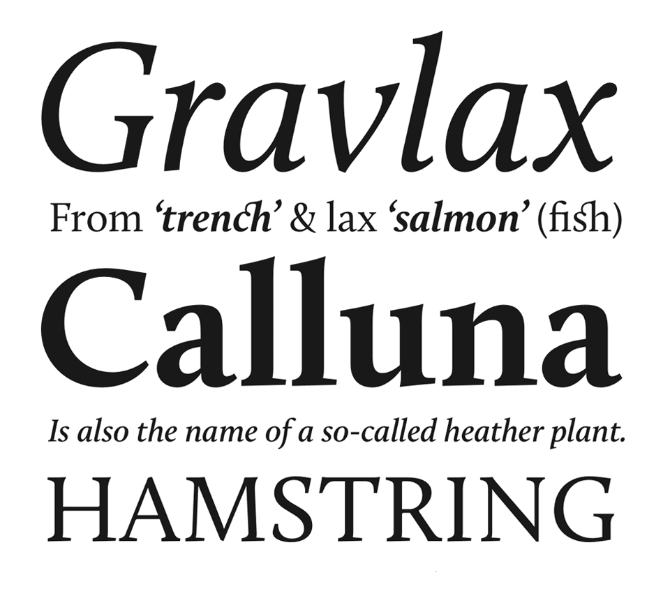 Calluna from Jos Buivenga [link to MyFonts]