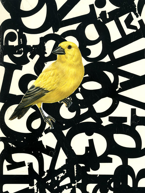 able-parris-yellow-bird-collage