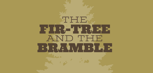 fir-bramble