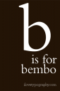 b-bembo-iphone-wallpaper.png